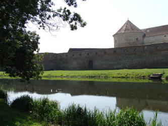 Cetatea Fagarasului by hariana