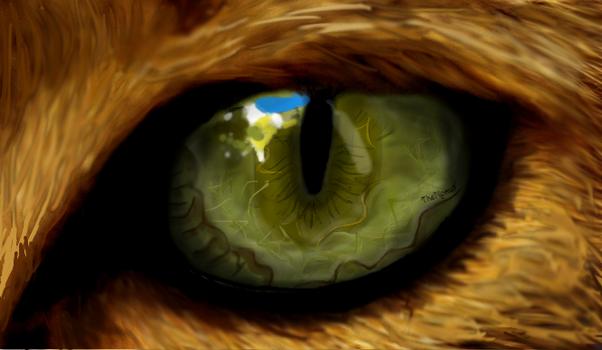 Cat eye (I tried) by TheNonus