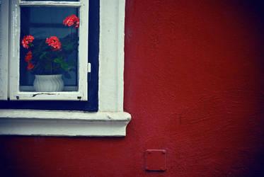 windows in my garden by pprincessbydawn