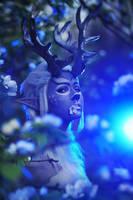 Girl deer Moonlight by AshreiMEW