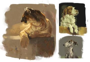 Fur studies (18/05/18) by SamSantala