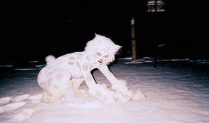 Snow Leopard Girl by Gun-Cougar