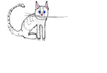 cat 2 by triggerhappylea
