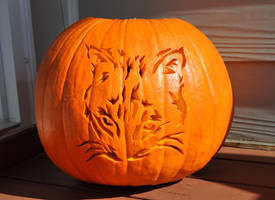 Cat Pumpkin Carving -Not Lit- by ladybug95