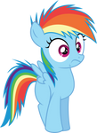 Rainbow Dash what gives by Dusk2k