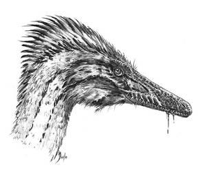 Austroraptor cabazai by dustdevil