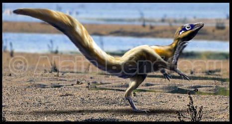 Sciurumimus albersdoerferi by dustdevil