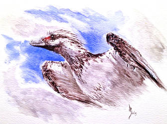 French Raptor by dustdevil
