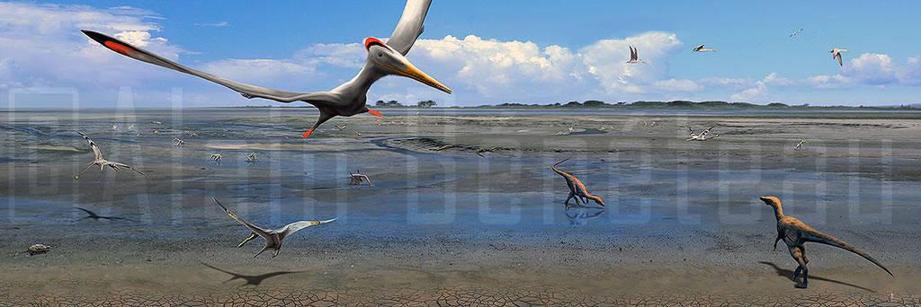 La plage aux pterosaures - Crayssac - France by dustdevil
