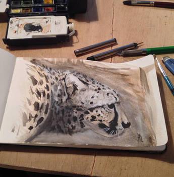 Cheetah portrait by dustdevil