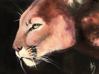 Mountain lion by dustdevil
