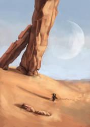 The desert by kupieckorzenny