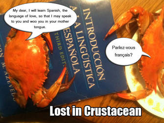 Lost in Crustacean by SavvyRed