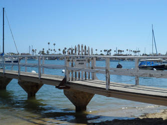 Private Pier by InkTheEchidna