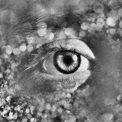 saddest eyes on earth IV by Anakpatok
