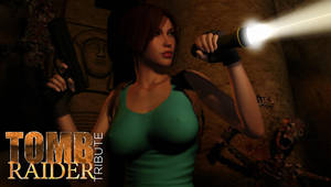 Tomb Raider Tribute 005 by bleinnie