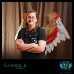 Gabriel's Wings by Wolfbird