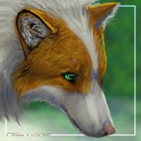Kujo - Souls RP by WindSeeker