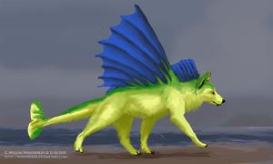 Avari Chelan by WindSeeker