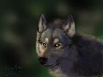 iPad Wolf by WindSeeker