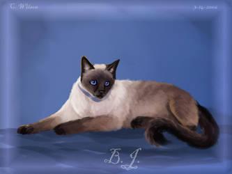 B.J. The Cat by WindSeeker