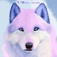 Sora Ryuu - Myth RP by WindSeeker