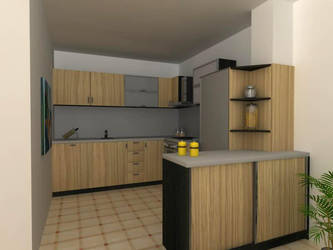 kitchen zebrano 4 by shno