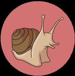 Snail by SilverCrab
