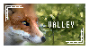 [Comm] Signature stamp-Valley by AKoukis