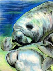 Dugong (Sea Cow) by AtListana