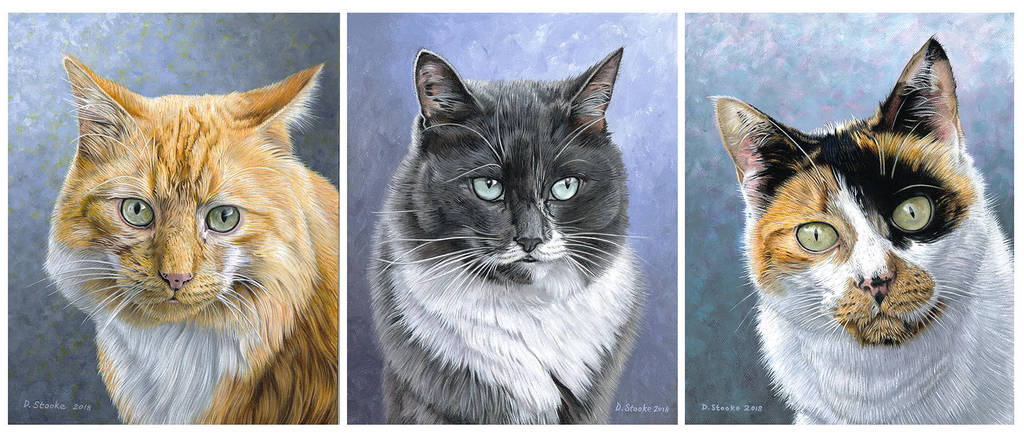 Three Cats by NewAgeTraveller