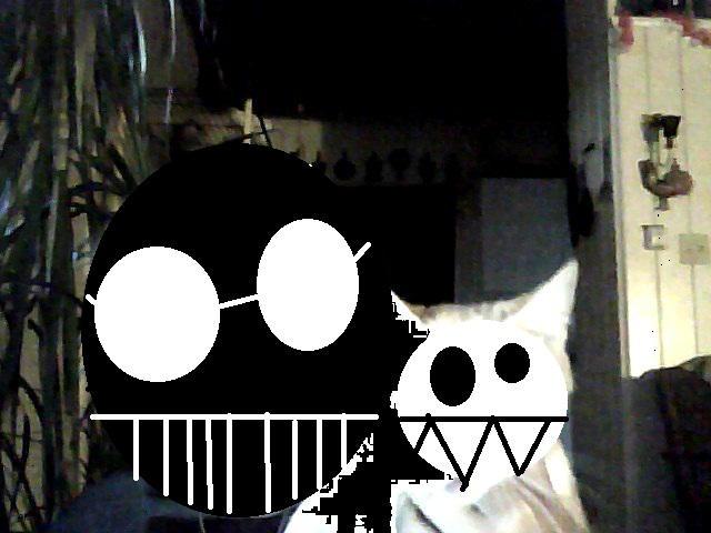 pokeguy556's Profile Picture