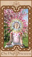 Tarot: The High Priestess by TOOLaree