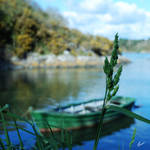Bring me little boat by Hieronimus-art