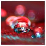 Perle by Hieronimus-art