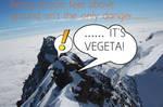 IT'S VEGETA! by SonAmyFan362
