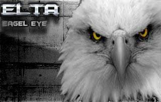 eagle eye by Narutoalg