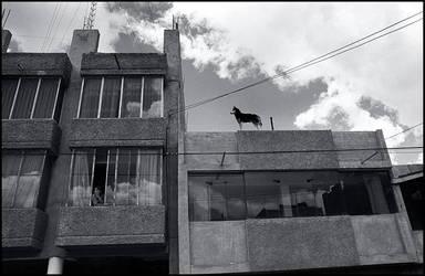 Peru 20 by ESafian