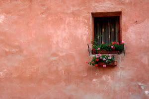 window by mihmeekee