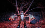 Demon's run [Wallpaper] by FotoFurNL
