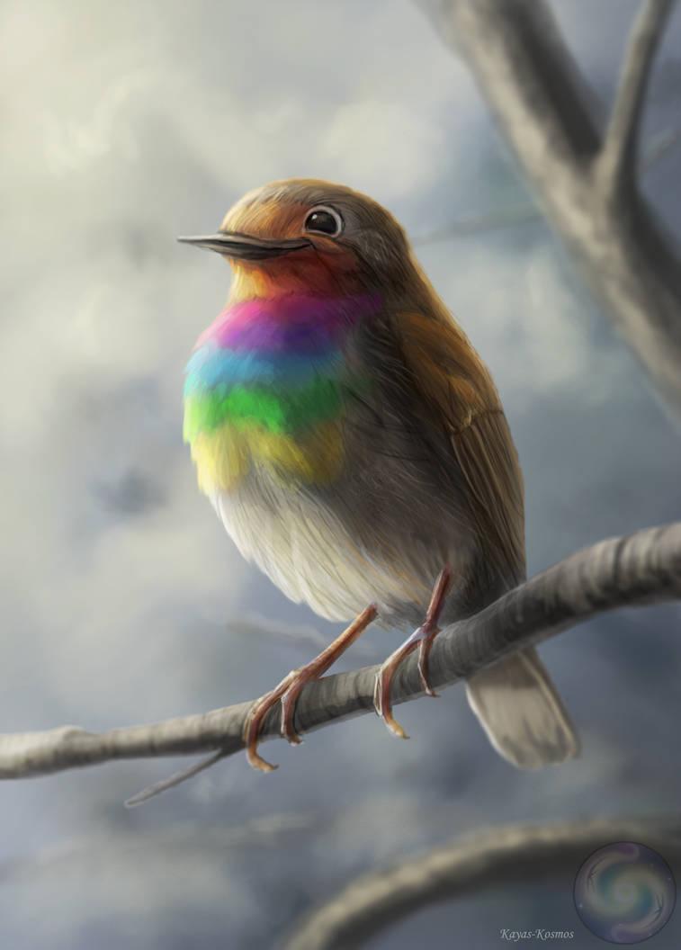 Robin rainbowbreast. by Kayas-Kosmos