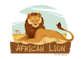 African Lion by morteraphan