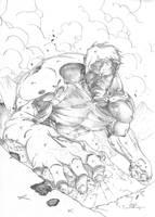 Hulk by abc142