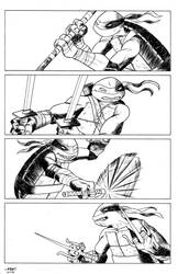 Turtles by fkemp3
