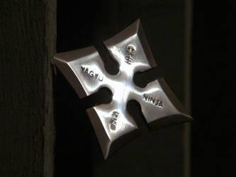 Moonlight Steel by IceAnubis