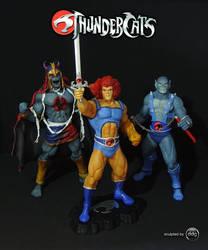 My Thundercats by ddgcom