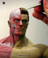 Anatomy Statue WIP by ddgcom