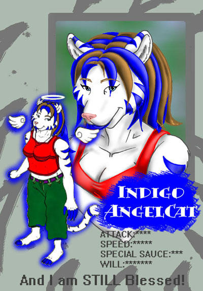 IndigoAngelCat's Profile Picture