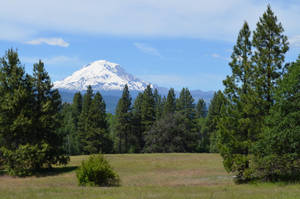 Mount Adams by Neiot