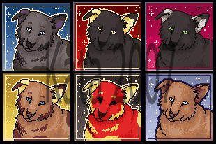 DogPort - Sold by Kata-Ports